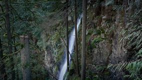 Waterfall Down Rock Face In Scenic Forest stock video