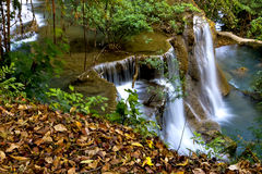 Waterfall and dry leaf Royalty Free Stock Photos
