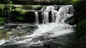 Waterfall on Dunloup Creek Loop stock footage
