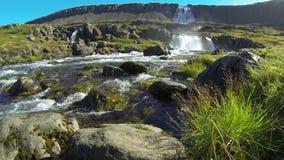 Waterfall Dynjandifoss stock video
