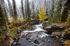 Waterfall in East Kazakhstan, Altai mountains Stock Images
