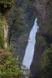 Waterfall in Ecuador Royalty Free Stock Photos