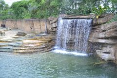 Waterfall in elephant enclosure. At Wildlands Emmen royalty free stock images