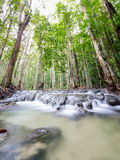 Waterfall in emerald pool 2 Stock Photography