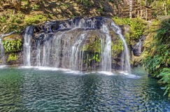 Waterfall Empties Into Beautiful Pond Stock Photos