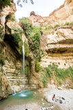 Waterfall in En Gedi Nature Reserve and National Park Royalty Free Stock Photography