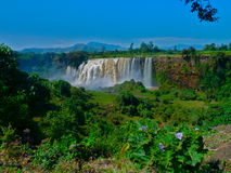 Waterfall in Ethiopia Royalty Free Stock Images
