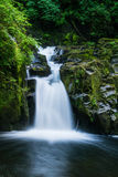 Waterfall. Eugene waterfall at sweet creek falls Royalty Free Stock Photography