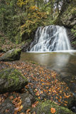 Waterfall in the Fairy Glen on the Black Isle in Scotland. Royalty Free Stock Photo