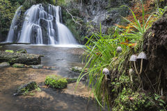 Waterfall in the Fairy Glen on the Black Isle in Scotland. Royalty Free Stock Images
