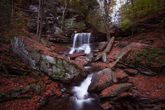 Waterfall and Fall. A beautiful waterfall in the Rickets Glenn State Park in Pennsylvania during fall Royalty Free Stock Photo