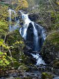 Waterfall in forest in autumn Royalty Free Stock Image