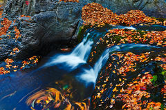 The waterfall and fallen colors leaves royalty free stock images