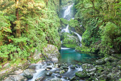 Waterfall/fiordoland,Milford track,New Zealand Royalty Free Stock Images