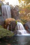 Waterfall and fish Stock Photo