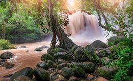 Waterfall from flash flood in the rain forest. Of Thailand with low sunset lighting stock photo