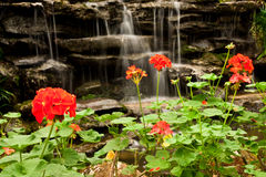 Waterfall and flower Stock Photo