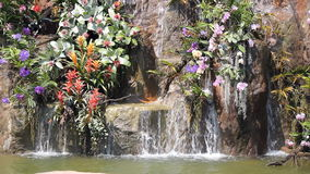 Waterfall and flowers stock footage