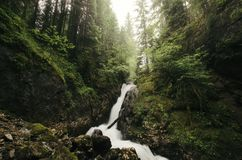 Waterfall flowing through mountain pine forest Royalty Free Stock Image