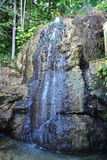 Waterfall. A flowing waterfall surrounded by trees in Jamaica the caribbean stock image