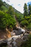 Waterfall flows through evergreen forest down a rocky creek. stock photo