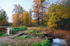 The bridge over the stream in autumn Park. Royalty Free Stock Photo