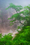 Waterfall foggy mountain view at Seoraksan National Park Royalty Free Stock Images