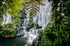 Waterfall and foliage at Longshan Temple, in Taipei, Taiwan. Stock Photos