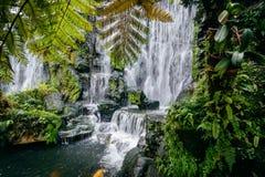 Waterfall and foliage at Longshan Temple, in Taipei, Taiwan. Stock Photos