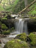 Waterfall in forest. Waterfall in spring forest and down trees Royalty Free Stock Photography