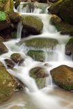 Waterfall into the forest. Waterfall on rocks with musk Royalty Free Stock Image