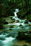 Waterfall in forest Royalty Free Stock Photos