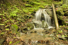 Waterfall in the forest Royalty Free Stock Photos