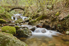 Waterfall in the forest. A waterfall in the forest, long time exposure stock photography