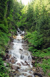 Waterfall in forest. Beautiful waterfall in forest of mountains Royalty Free Stock Photos