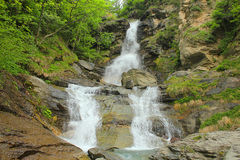 Waterfall in the forest. A waterfall in the forest Royalty Free Stock Photo