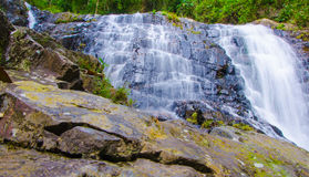 Waterfall in the forest with abundance. Royalty Free Stock Image