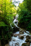Waterfall in Forest in Austria Royalty Free Stock Image