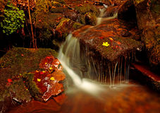 Waterfall in the forest autumn Stock Image