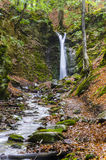 Waterfall in a forest, autumn Stock Images