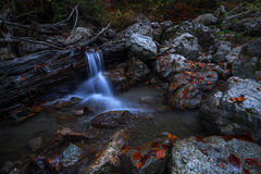 Waterfall in the forest , autumn. Rusty leaves on stones into a forest,in autumn Royalty Free Stock Photos