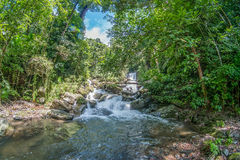 Waterfall in the forest. Waterfall,  background, The forest and waterfall Royalty Free Stock Images