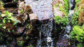 Waterfall in the forest. Beautiful action in the forest. Waterfall rocks stock video