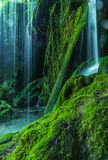Waterfall in a forest Stock Photos