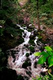 Waterfall in a forest close to  Sohodol river. In Gorj county, Romania Royalty Free Stock Photo