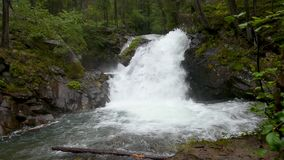waterfall in the forest stock footage
