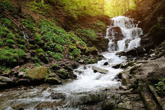 Waterfall in forest. In the deep forest on mountain Royalty Free Stock Photo