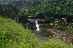 Waterfall in the Forest. Waterfall in dense forest of India Stock Image