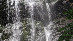 Waterfall in the forest stock video footage