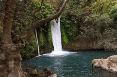 Waterfall in the forest, it falls into the lake stock image